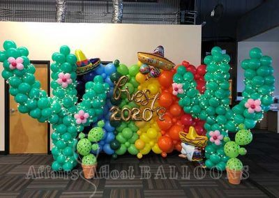 balloon backdrops fort worth and dallas area