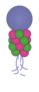 balloon column dallas fort worth metroplex