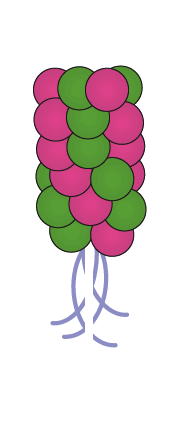 balloon-column-popsicle