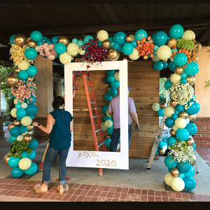 organic balloon decorations -