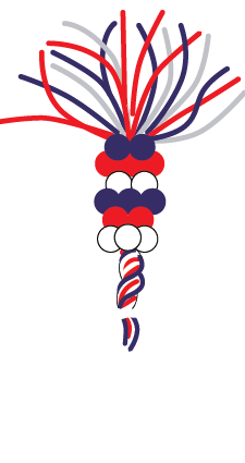 parade-balloons-lg-spinner-3