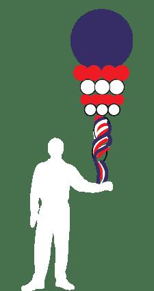 parade-balloons-spinner-2