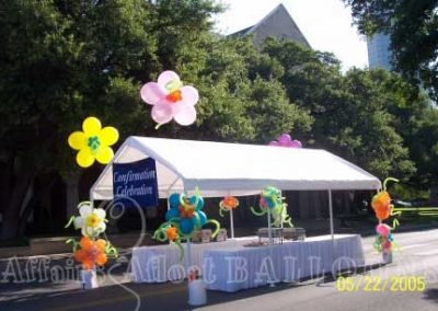 Specialty Decor Balloons 17