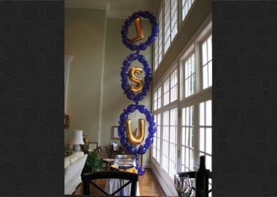Specialty Decor Balloons 55