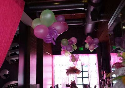 Specialty Decor Balloons 65